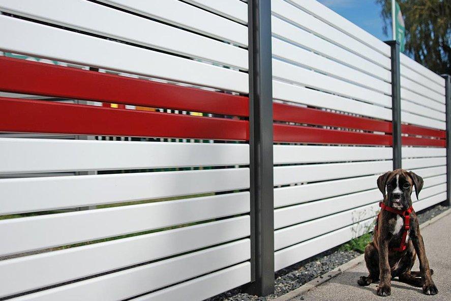 Gartenzaun aus Aluminium in weiß mit rotem Akzent, dahinter sitzt ein Hund